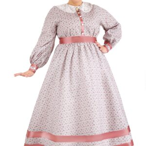 Plus Size Civil War Dress Costume for Women